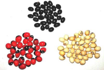 Seedbazaar 51 Pcs each White, Black and Red Rosary Pea (Abrus precatorius), Gunja Seed