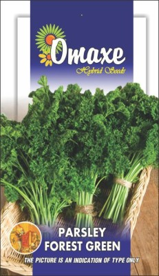 Omaxe PARSLEY FOREST GREEN TRIPLE CURLED 50+ SEEDS PACK BY OMAXE Seed