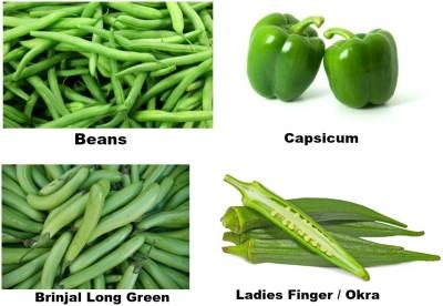 Easy Gardening Beans, Capsicum, Brinjal Long Green, Okra / Ladies Finger F1 Hybrid Seed
