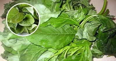 Kraft Seeds Cholai Saag - Green Seed