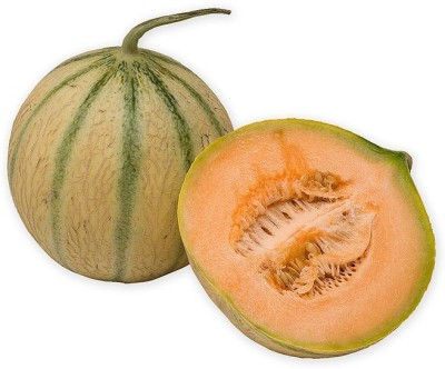 Real Seed Musk Melon Hybrid Premium Seed