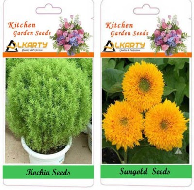 Alkarty Kochia and Sungold (Summer) Seed