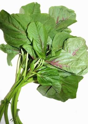 Real Seed Green Choulai (Amaranth) F1 Hybrid Seed