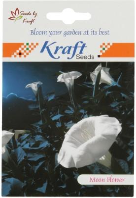 Kraft Seeds Moonflower Flower (White) Seed