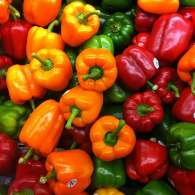 E-Plant Capsicum mix seeds Seed