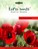 FARM SEEDS Red Poppy 2 Packet Seeds Seed...
