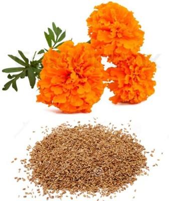 Alkarty marigold flower Seed