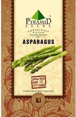 Pyramid Seeds Asparagus Seed