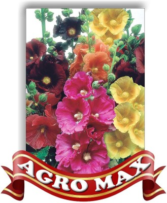 Agro Max HOLLYHOCK DOUBLE MIX Seed
