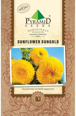 PYRAMID SEEDS Sunflower Sungold Seed