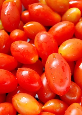 Real Seed Cheery Tomato F1 Hybrid Imported Seed