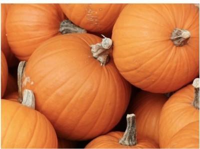 Agricart Pumpkin Seed