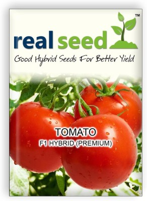 Real Seed Tomato Hybrid F1 Vegetable Seed(30 Per Packet)