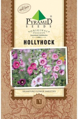 PYRAMID SEEDS Hollyhocks Seed