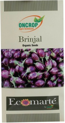 Oncrop Agro Sciences Brinjal Organic (Pack Of 2) Seed