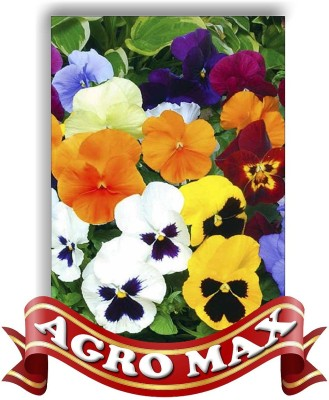 Agro Max PANSY SPECIAL MIX Seed