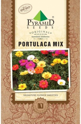PYRAMID SEEDS Portulaca Mix Seed