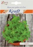 Kraft Seeds Oregano Herb Seed (200 per p...