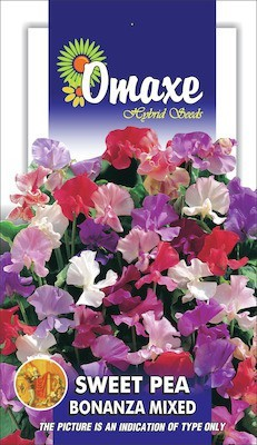 Omaxe SWEET PEA BONANZA MIXED 40 SEEDS PACK BY OMAXE Seed