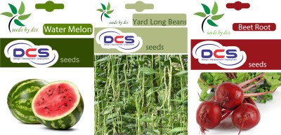 DCS Water Melon, Yard Long Beans & Beet Root (3 Pack of 50 Each seeds) Seed