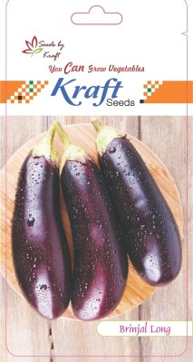 Kraft Seeds Brinjal Hybrid Purple Long By Kraft Seed