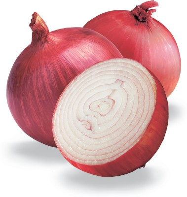 Farm Seeds Hybrid Onion Seed