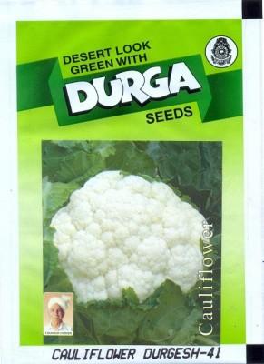 Durga Seeds CAULIFLOWER DURGESH-41 Seed