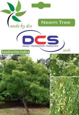 DCS Neem Forest Plant (10 Seeds Per Pack) Seed(10 per packet)