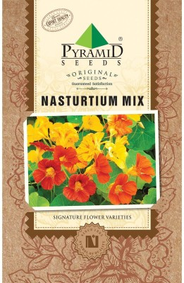 PYRAMID SEEDS Nasturtium Mix Seed