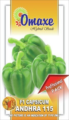 Omaxe CAPSICUM F1 HYB ANDHRA 115 --30 SEEDS PACK BY OMAXE Seed
