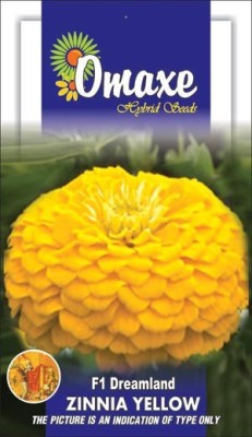 Omaxe ZINNIA F1 ELEGANS YELLOW SUMMER FLOWER SEEDS-AVG 40/50+ SEEDS BY OMAXE Seed