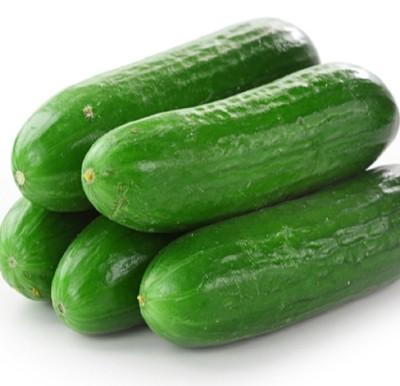 Biocarve Cucumber Seed