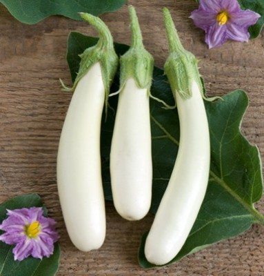 Raunak Seeds Brinjal White Long, 100 Seeds Seed