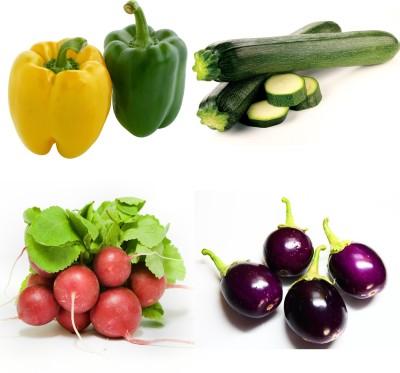 Farm Seeds Capsicum & Zuccuni & Radish Globe & Brinjal Chu Chu Seed