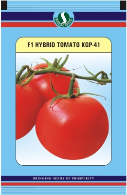 Sungro Seeds Limited Hybrid Tomato Seeds (Pack of two) Seed