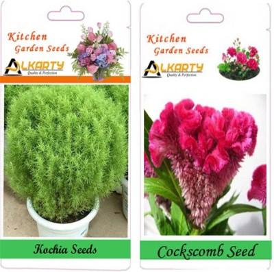 Alkarty Kochia and Cockscomb (Summer) Seed