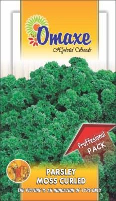 Omaxe PARSLEY MOSS CURLED 10 GM /500+ PROFESSIONAL SEEDS PACK Seed