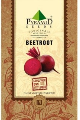 Pyramid Seeds Beetroot Seed(50 per packet)