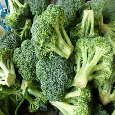 Biocarve Broccoli Seed