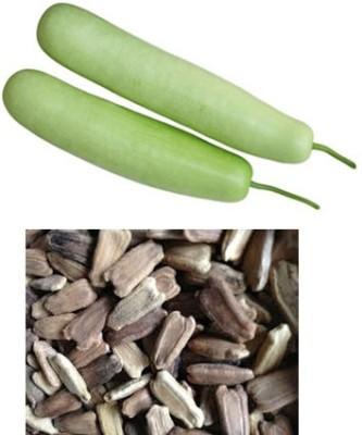 Alkarty bottle gourd Seed