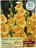 Kraft Seeds Gladiolus Flower Bulbs Yello...
