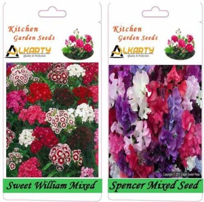 Alkarty Sweet William Mixed and Sweet Peas Spencer Mixed (Winter) Seed