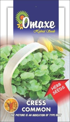 Omaxe CRESS IMPORTED 50 SEEDS BY OMAXE Seed