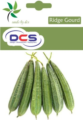 DCS Ridge Gourd Seeds (pack of 50) Seed(10 per packet)
