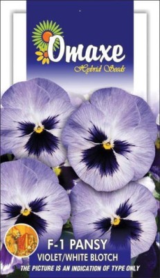 Omaxe PANSY VIOLET/WHITE BLOTCH WINTER FLOWER 10 SEEDS PACK BY OMAXE Seed
