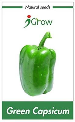 Igrow 4-SV0036 Seed
