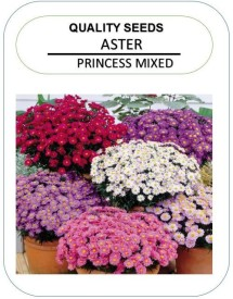 NeART Aster-Princess-M-NE-2 Seed(50 per packet)