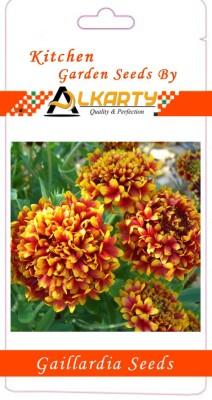 Alkarty Gaillardia Seed