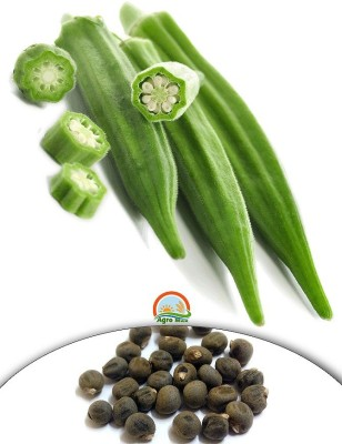 Agro Max Okra - Lady Finger Export Quality Vegetable Seed