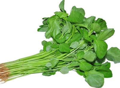 Divine Tree Spinach Vegetable Seed